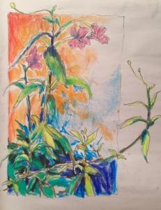 Patio Sketch 9-6-15